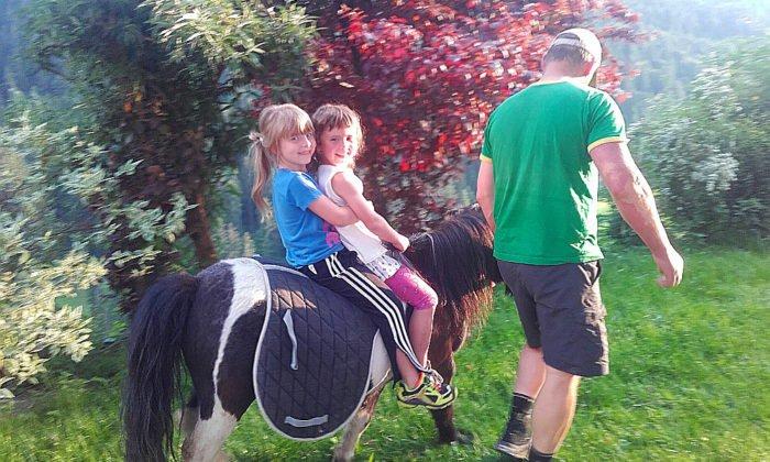 hoferlebnis-fruehling-ponyreiten