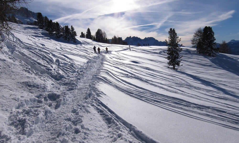 Ins winterliche Tschamintal