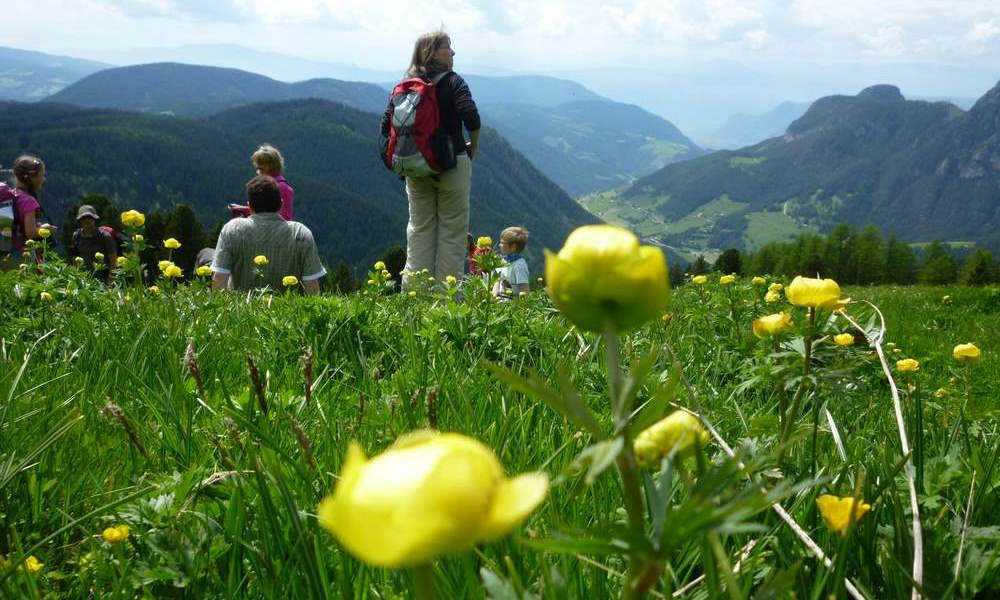 Hiking holidays in spring