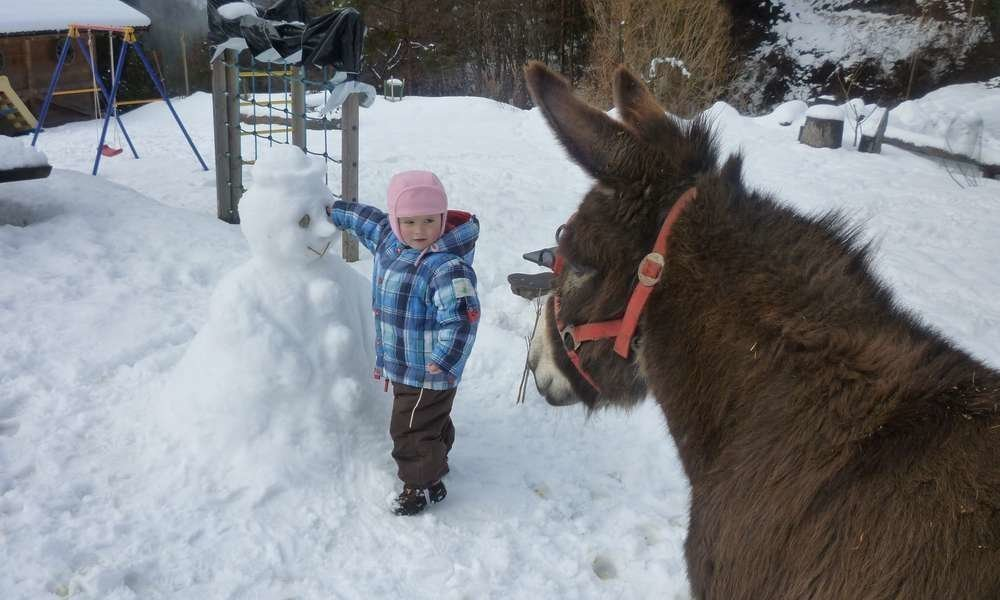 Winter vacation on the farm
