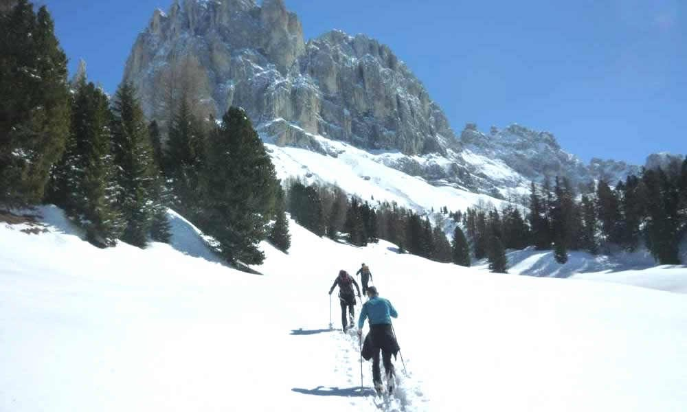 Skiing, winter and snowshoe hikes, tobogganing in breathtaking surroundings