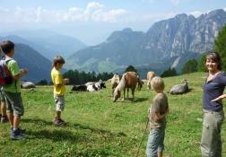 Wandern Tiers am Rosengarten