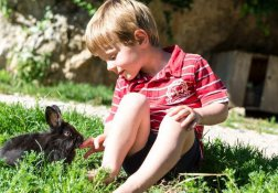 Platschgoler Hof Paradies für Kinder
