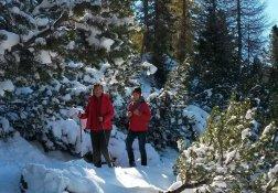Beim Winterwandern