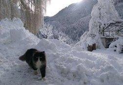 winterurlaub-dolomiten (16)